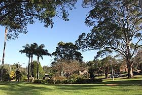 Oatley Memorial Gardens is a beautiful, open space near the centre of Oatley Village which offers seating, shelter, picnic tables and two playgrounds for children. Grab a takeaway coffee from Tidz Across The Park (station side of park) & enjoy the gardens. #gardens #oatley #mcgrathstgeorge