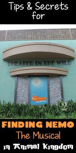 Everything you need to know about Finding Nemo-The Musical in Animal Kingdom.
