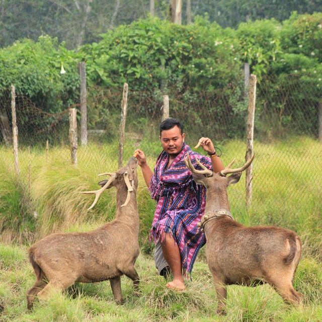 Lokasi: Kampung Ranca Upas, Ciwidey, Bandung. #discoverwilderness #flirtingwithnature #explorebandung
