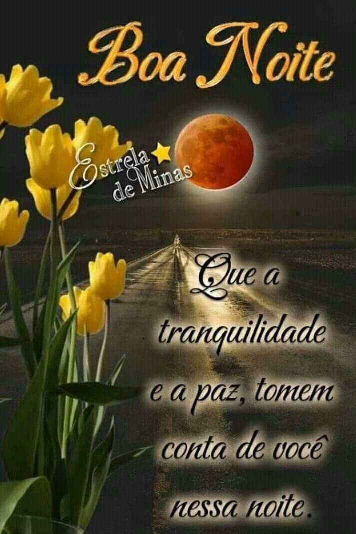 Pin De Marilene Nunes Em Boa Noite Mensagem De Boa Noite Boa