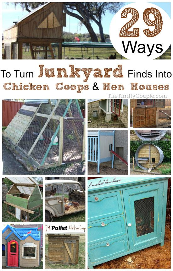Learn how to turn everyday items, junk, trash and other items into amazing and practical DIY chicken coops and DIY hen houses with these 29 crazy trash ideas! Use a trampoline, swingsets, dressers, cabinets, cribs, playhouses, pallets, armoire, cars and more.