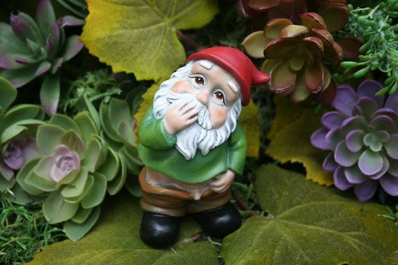 """Funny Gnome - Caught With His Pants Down - """"Wee Willie Winkie"""" - Rude Gnome"""