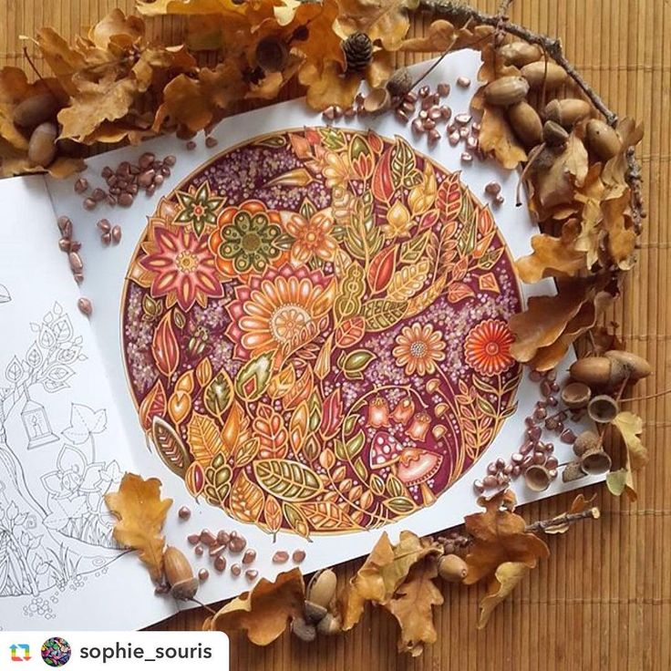 """Gorgeous!!!! By @sophie_souris 👏👏👏😍 #GPRepost,#reposter,#notetag @sophie_souris via @GPRepostApp ======> @sophie_souris:A autumn leaves flew 🍁🍂🍃... my first coloring of the book """"enchanted forest """" 💛 #coloriage #coloring#colouring #coloringbook #coloriagepouradultes #adultcolouring #adultcoloringbook #johannabasford #forêtenchantée #enchantedforest #pen #tombow#stabilo #posca"""