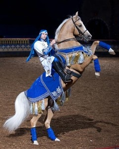 Horses at Arabian nights...got to ride Top Brass - absolutely perfect horse · Cool CostumesCostume IdeasArabian ... & 126 best Horse Costume Ideas images on Pinterest | Horses Horse ...