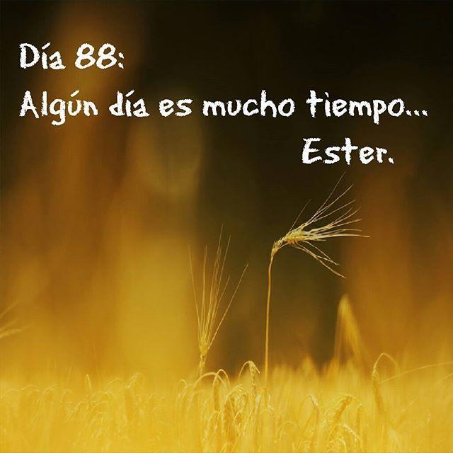 Día 88 #día88 #Ester  #2016  #algúndíaesmuchotiempo