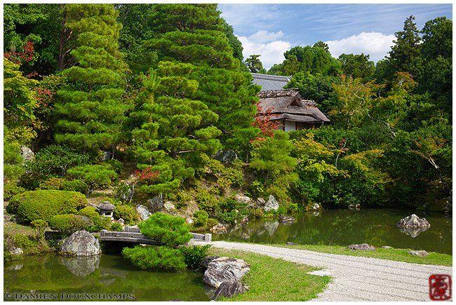 Kyoto Photo: Ninna-ji Temple Garden