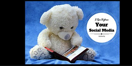 Improve your social media authority with this free guide.