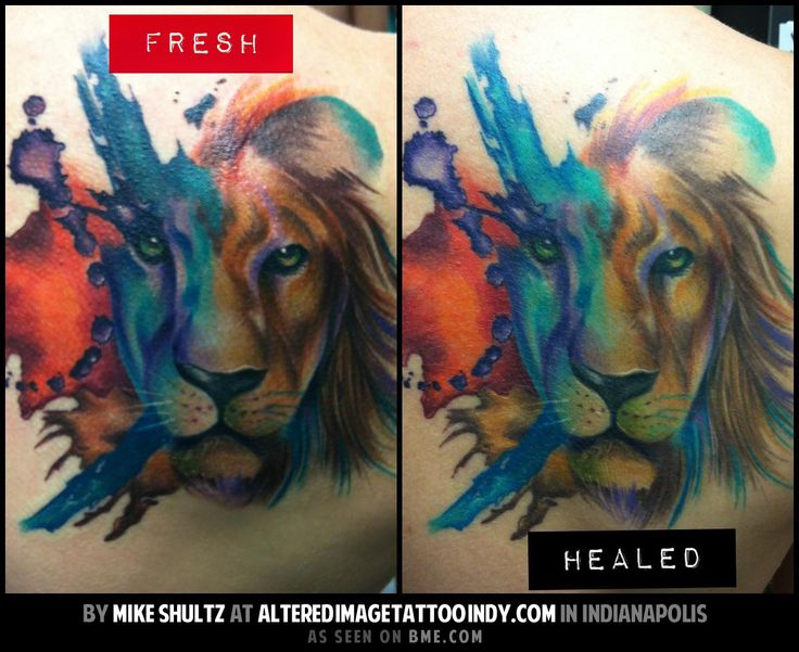222 best images about tattoos on pinterest lion tattoo for Best way to heal a tattoo