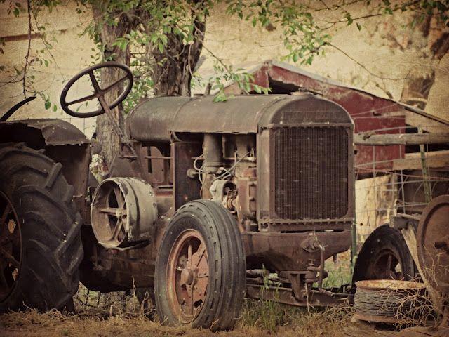 miss gracie's house: family farm fun...