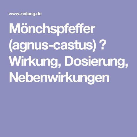 Mönchspfeffer (agnus-castus) ▷ Wirkung, Dosierung, Nebenwirkungen