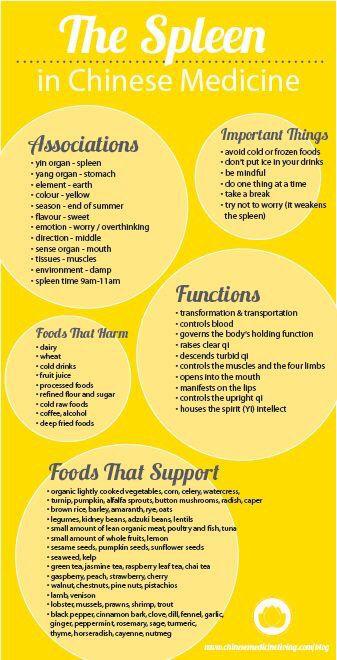 Chinese Medicine Yin Foods List