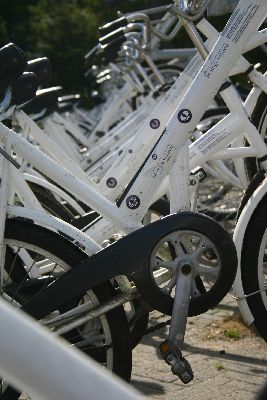 Netherlands - Amsterdam. Kroller Muller museum - free White Bicycles  at De Hoge Veluwe Park. 5,400 hectares of woodland, heathland, peat bogs and drift sand