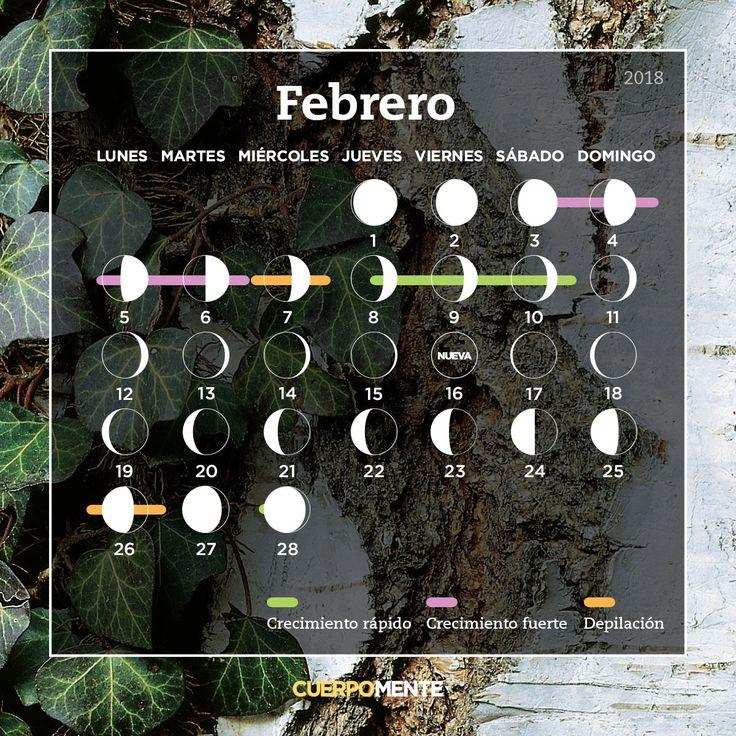 Calendario lunar de febrero