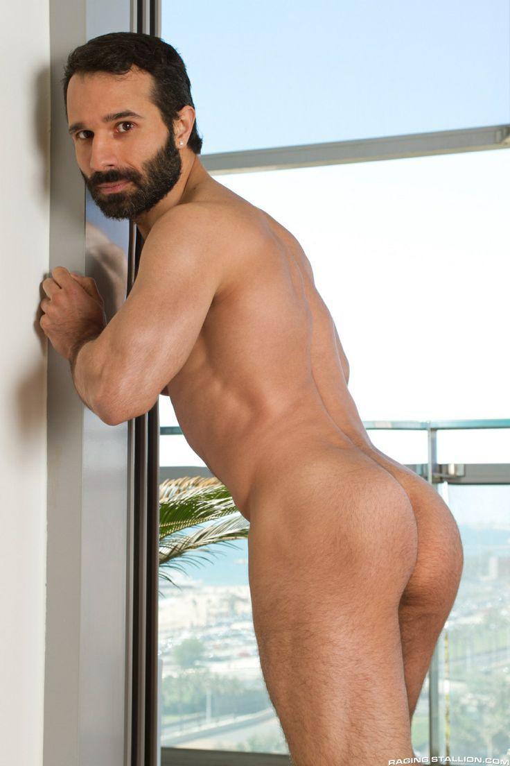 gay erotic centaur