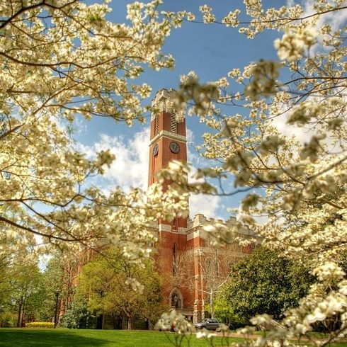 Vanderbilt University | 41 Scenic College Campuses That Were Made For Instagram