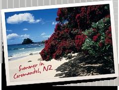 Stunning Coromandel Beach,   New Zealand