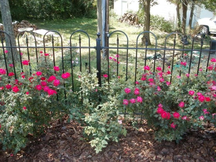 96 best images about custom wrought iron fence on for Flower bed fencing