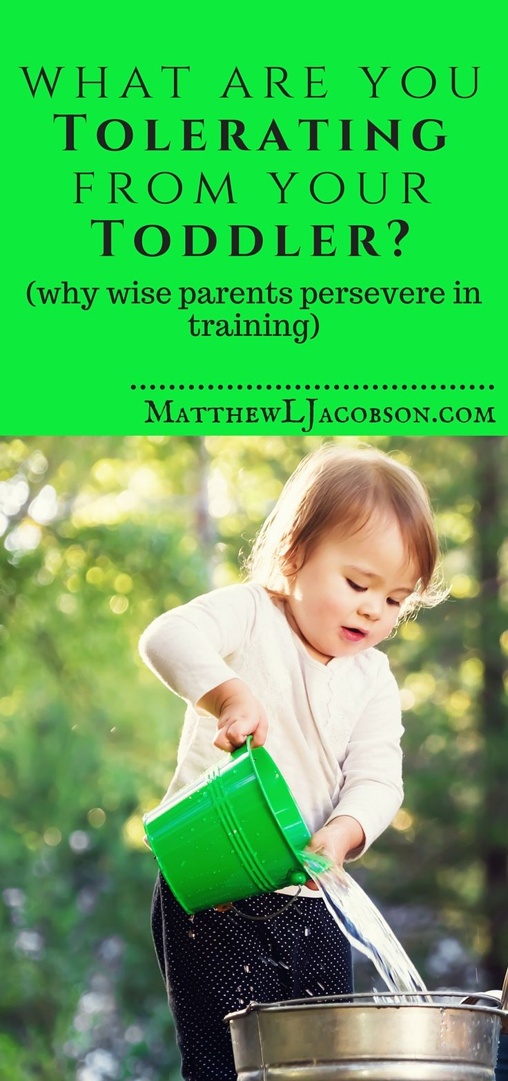 What Are You Tolerating From Your Toddler? Why Wise Parents Persevere in Training