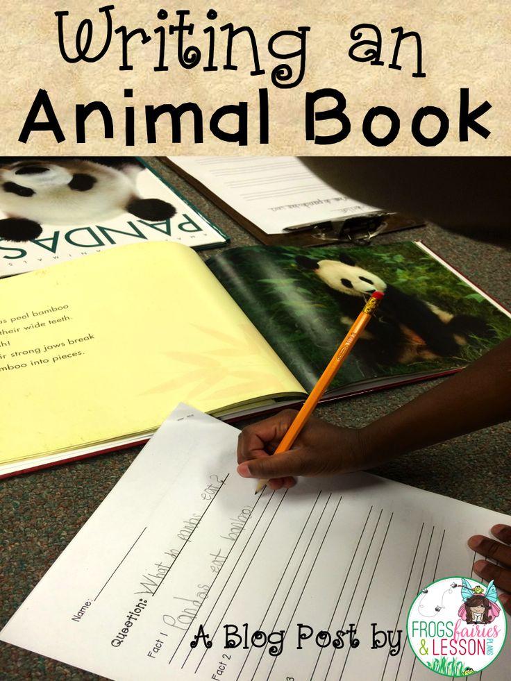 writing a novel approach homeschool