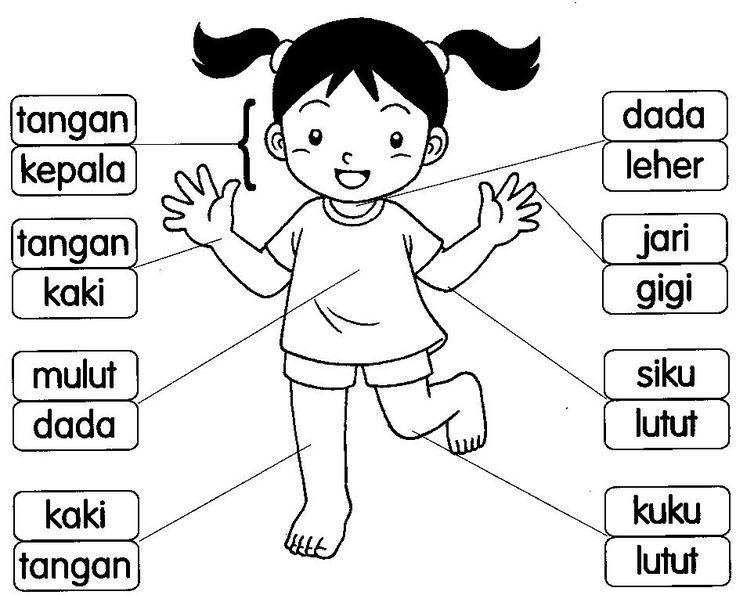 BAHASA MALAYSIA PRASEKOLAH: Latihan Badan Saya