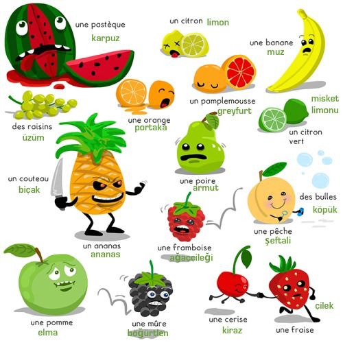 Turkish words for meyveler (fruits) in GREEN. French words in BLACK. This illustration does not belong to me. I simply added the turkish words.