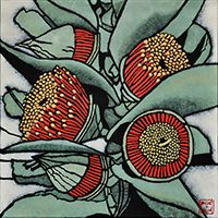 "Botannical art ""Eucalyptus macrocarpa"" from the botanicals series by Sydney artist Julie Hickson."
