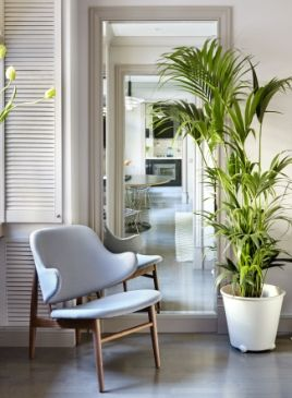 This outstanding armchair will match every apartment! #designerfurniture #ideasforhome #interiordesign #decor