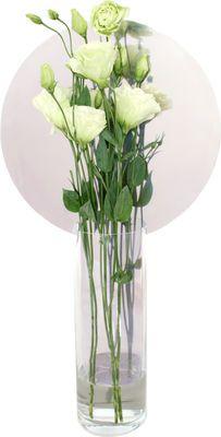 Petite Friture Narciso Cerchio Vase lang – Petite Friture