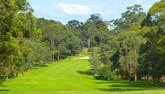 Enjoy an amazing 3 month trial membership at the beautiful Gordon Golf Club! These bookings are available 7 days a week at one of Sydney's Hidden Gems. Normally $350, today just $199! #golf #golfsyd