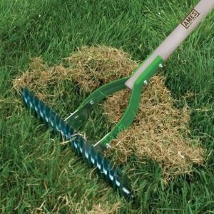 Ames 19-Tine Adjustable Thatch Rake-2915100 at The Home Depot