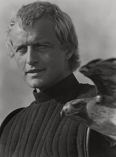 Rutger Hauer, 1984 (Tristan of Carmaugh)