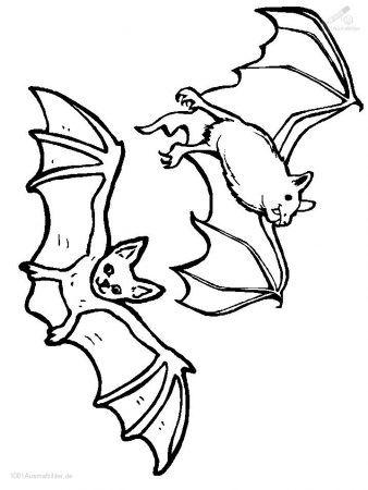 Vampire Ausmalbilder Malvorlagen Tiere Malvorlagen Halloween Fledermaus Malvorlagen