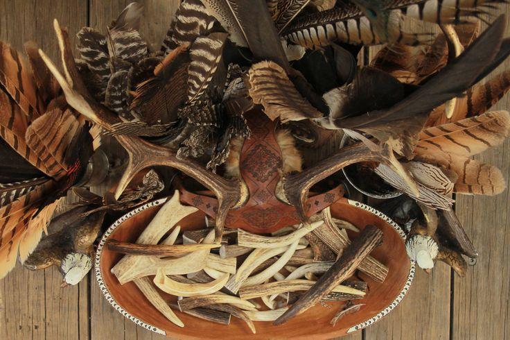 My gorgeous collection of feathers and stag horns at the Buffalo Girl studio.