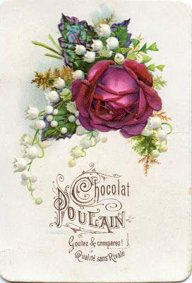 Chocolat Poulain : roses - Le grenier de l'école | #vintage #postcard