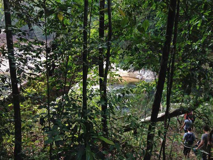 Lake Kenyir, Kelah Sanctuary. Along a narrow path with breathtaking scenery.