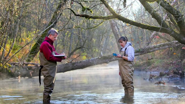A team led by the Department of Energy's Oak Ridge National Laboratory has identified a novel microbial process that can break down toxic methylmercury in the environment, a fundamental scientific discovery that could potentially reduce mercury toxicity levels and support health and risk...