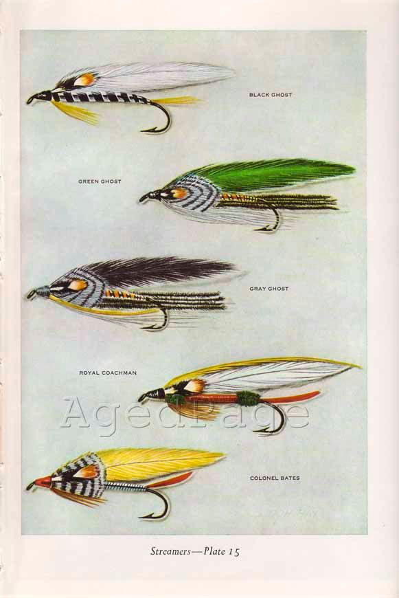 Vintage Print, Trout Fishing Flies, Art Illustration, Wall Decor, Double Sided, Streamers, Plates 15 & 16. $10.00, via Etsy.