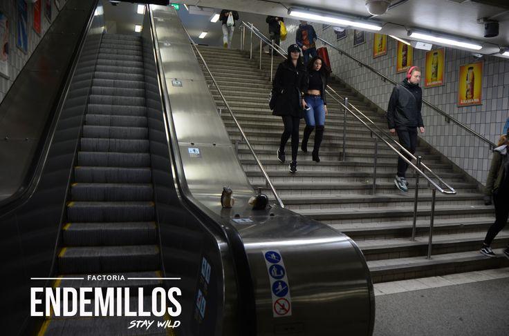 # Endemillos en la Central Station de Estocolm