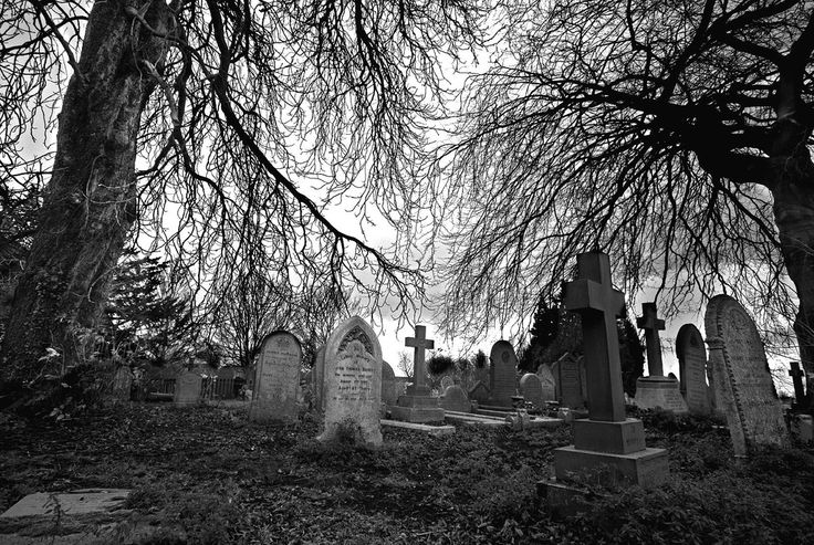 I'm strange I know, but I look a good spooky cemetery image. It's the Goth girl in me.
