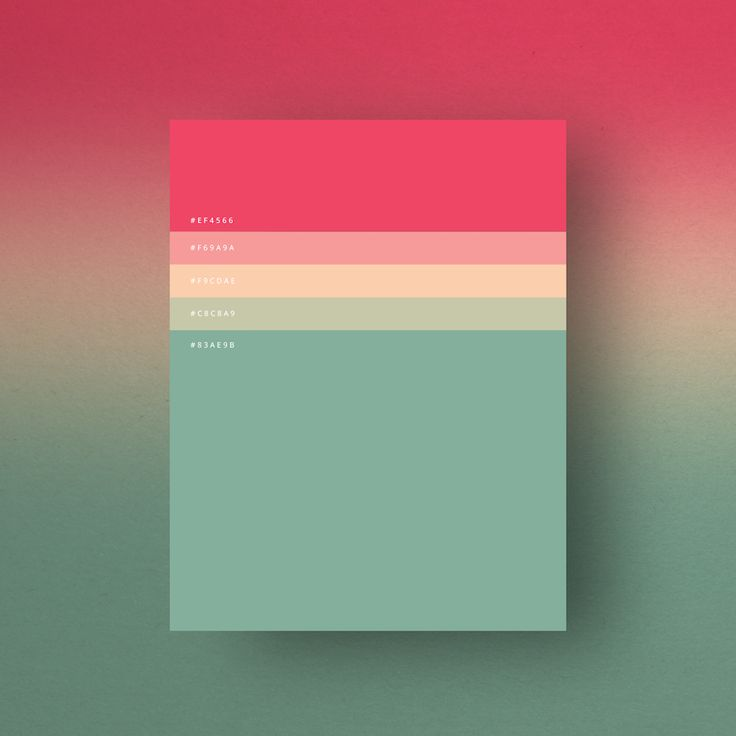 http://www.fubiz.net/2016/01/07/the-minimalist-color-palettes-of-2015/