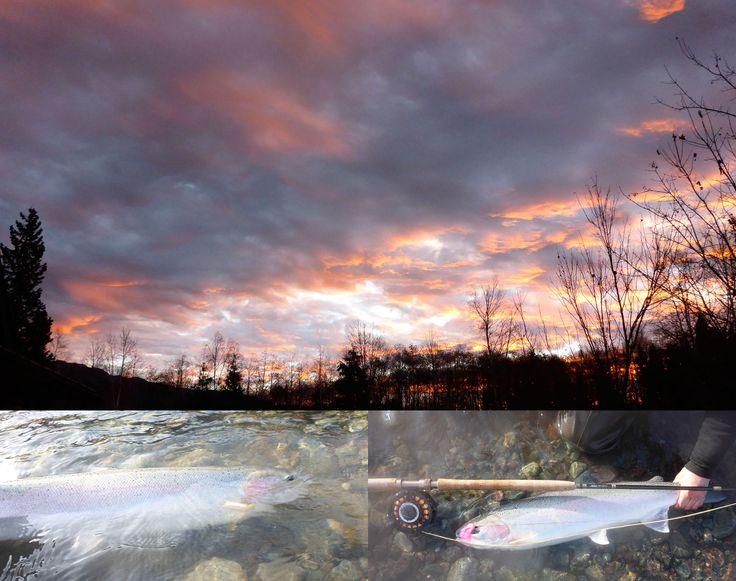 Skeena River Steelhead fishing at the Deep Creek Lodge, Terrace,British Columbia Canada