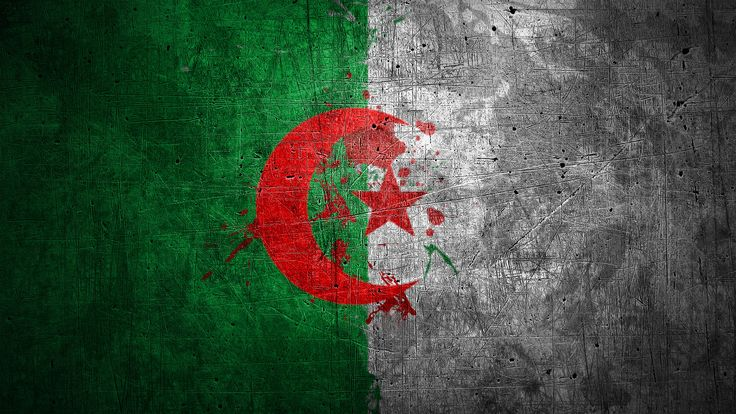 algeria flag wallpaper