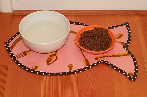 Cat water/food mat by Whiplash | Pink Chalk Studio could also do a dog version, perhaps in a bone shape?