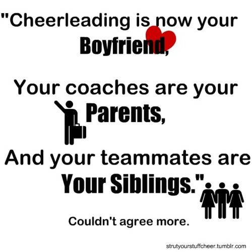 This is what a true cheerleader follows and lives. I dont get the Boyfriend thing lol but the others...ITS TRUE!