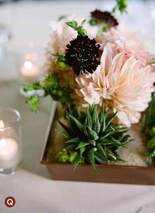 succulentsBlushes E.L.F., Inspiration Floral, Flower Centerpieces, Milk, Dahlias Parts, Café Au, Floral Spotlight, Succulents Centerpieces, Favorite Flower