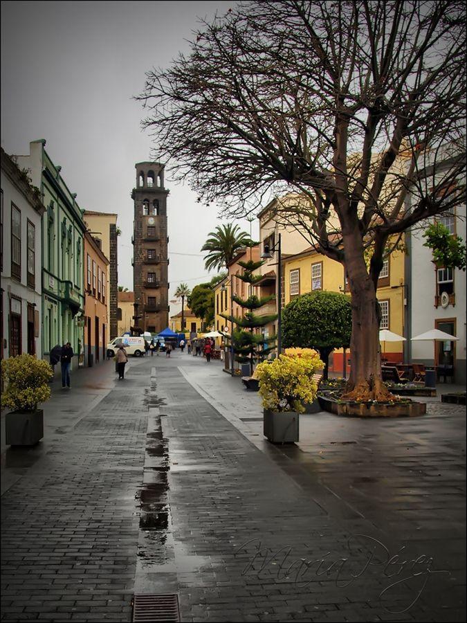 Al fondo la torre de la Iglesia de la Concepción e San Cristóbal de La Laguna, Tenerife. España.