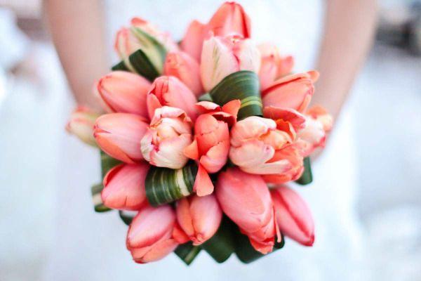 Coral tulip bouquet