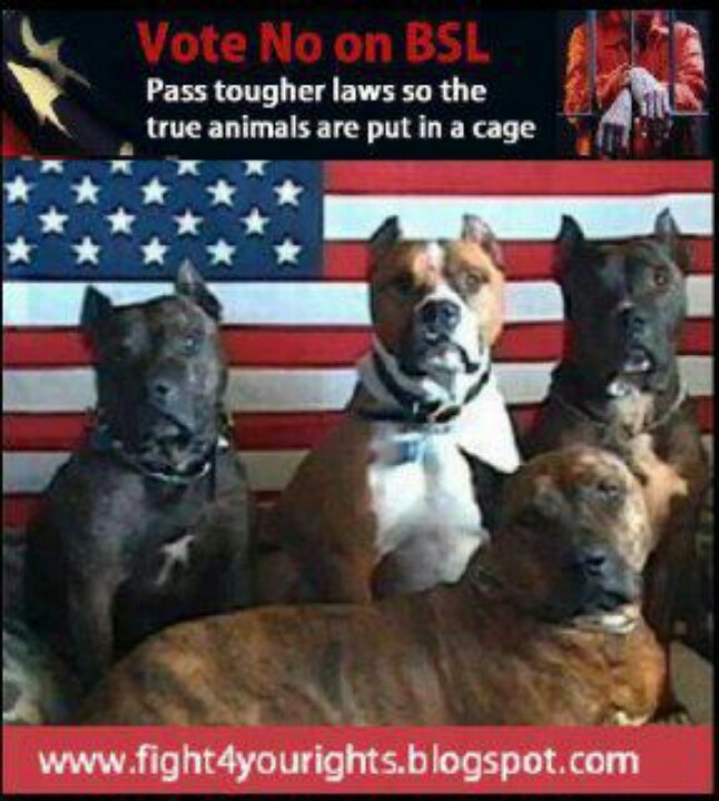 breed specific legislation bsl it's the Breed specific legislation (bsl) is defined as a law or statute that equates the qualities of a dangerous dog with a certain breed, and bans or.