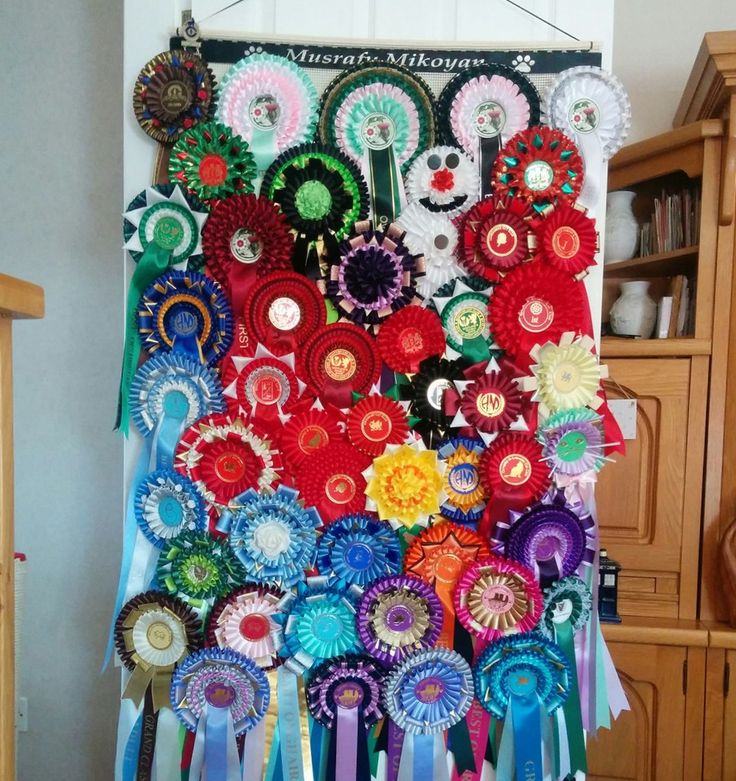Giant Size Rosette Holder idea for displaying Rosettes