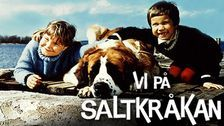 Vi på Saltkråkan - one of the best tv-series when I was a litte girl. I loved this one. It brings back so many good memories.